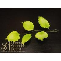 """Цветы из мастики - """"Ветка с листьями"""" (11169/p)"""