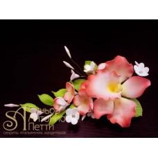 """Цветы из мастики - """"Букет орхидей"""", Красный (11176*D/p)"""