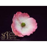 Цветы из мастики - Цветок, Розовый (11926*B/p)