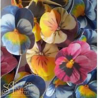 Вафельные цветы - Фиалки, Микс, 70шт. (13016)