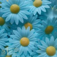 Вафельные цветы - Маргаритки, Голубые, 200шт. (13042RC)