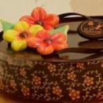 Переводные листы и формы для шоколада